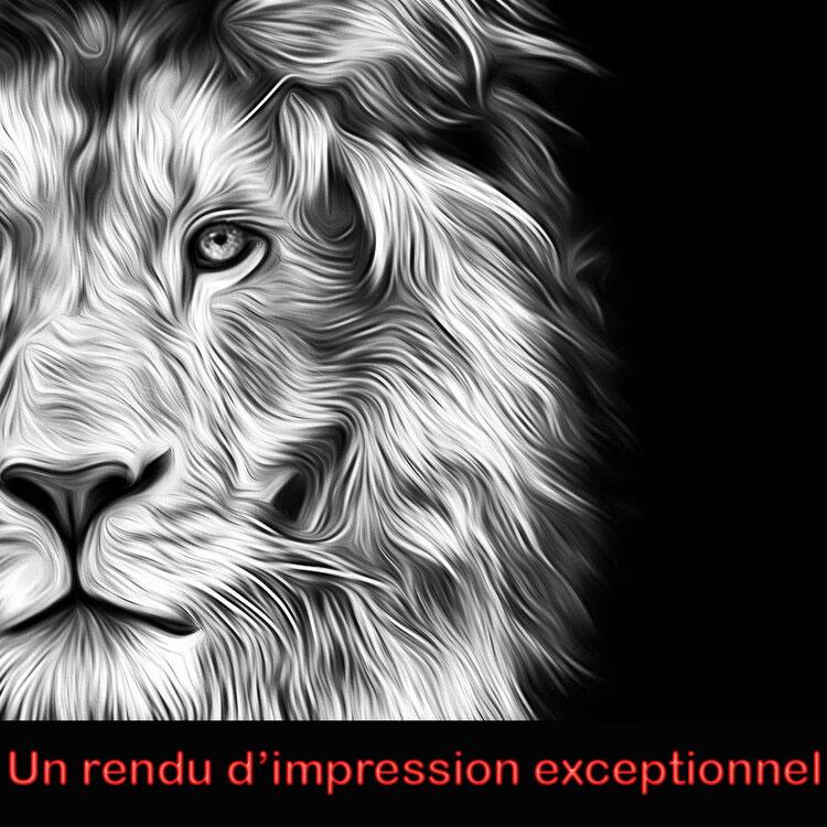 impression DTG