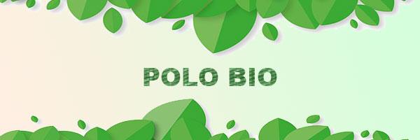 polo coton biologique